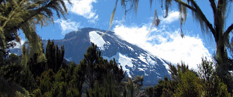 International Mountain Guides Kilimanjaro Climb and African Safari