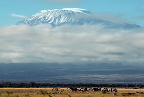 International Mountain Guides Kilimanjaro Climb