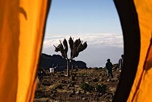 Tent view from the International Mountain Guides Kilimanjaro Climb