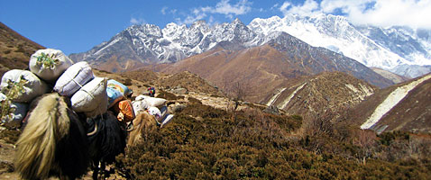 Everest Treks with International Mountain Guides