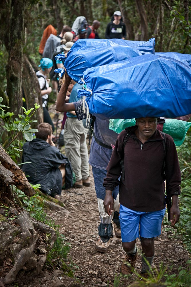 Porters on their way to Machame Camp at 10,000', IMG Kilimanjaro Climb. (Photo by Adam Angel)