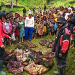 Porters and their families count out the loads of sweet potatoes, their staple food (Jason Edwards)