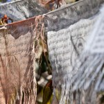 Best Culture Shot. Prayer Flags. Photo by Kim Cornicello.