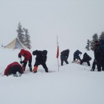 Group engaged in avalanche transceiver search practice
