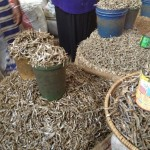 Bags of dried fish at the Moshi Market (Sheldon Kerr)