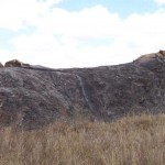 Pride of lions on a Kopje (rocky outcrop) in the Serengeti