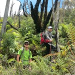 Exploring the area and bush whacking up to our high camp. (photo: Anthony Nightingale)