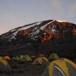 Karanga camp. (Jenni Fogle)