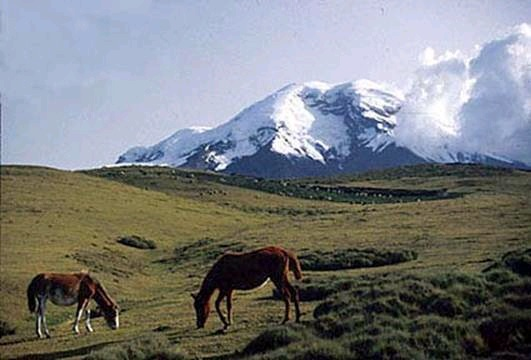 Chimborazo in good conditions (Jorge Anhalzer)