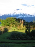 Cotopaxi from the gardens of Hacienda San Augustin (Phil Ershler)