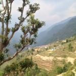 Landrung village (Jenni Pfafman)
