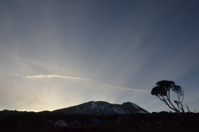 Sunrise from Shira Plateau Camp (Eben Reckord)