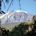 Kilimanjaro (19,340ft.)