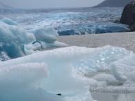 Some icebergs that've run ashore. (Photo Tye Chapman)