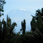 The grandeur of Kilimanjaro
