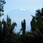 The grandeur of Kilimanjaro