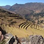 Peruvian Terraces (Peter Anderson)