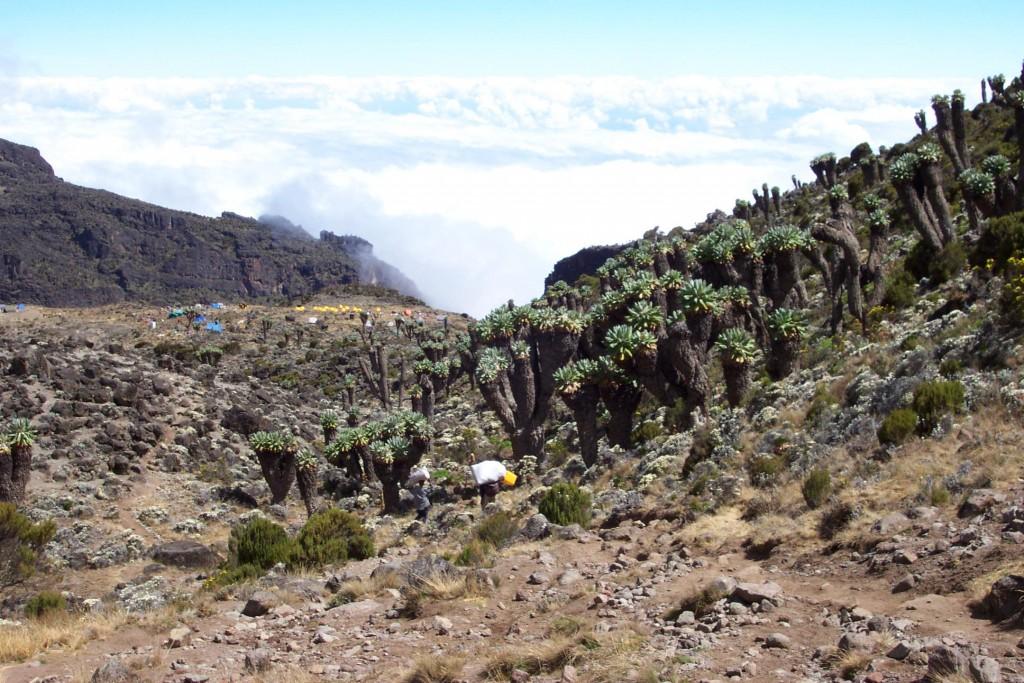 Descending to Barranco Camp