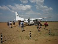 "Serengeti ""Airport"". (Greg Vernovage)"