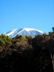 Kilimanjaro from Mweka Camp