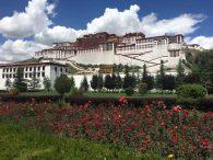 Potala Palace (Ang Jangbu)