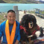 Ang Jangbu posing with a Tibetan Mastif (Mike Hamill)