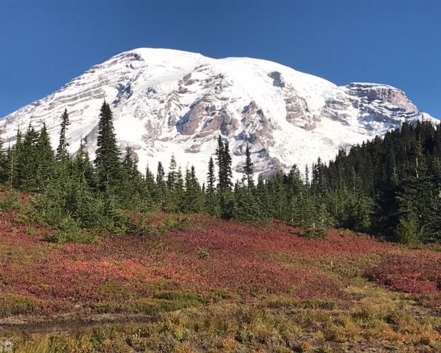 Mount Rainier in the Fall (Luke Reilly)