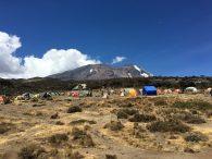 Kili and Shira Camp (Photo: Dustin Balderach)