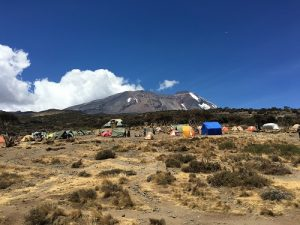 Kili and Shira Camp (Photo: Dustin Balderach)