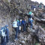 Climbing Barranco Wall on the Way to Karanga Camp (Phunuru Sherpa)