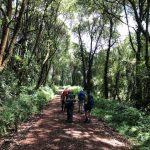 On the trail (Tye Chapman)