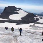 Rope Travel On The Paradise Glacier (Anna Hicks)