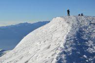 Illimani summit (Luke Reilly)